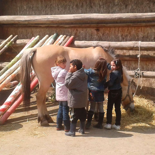 Enfants en stage qui brossent un poney