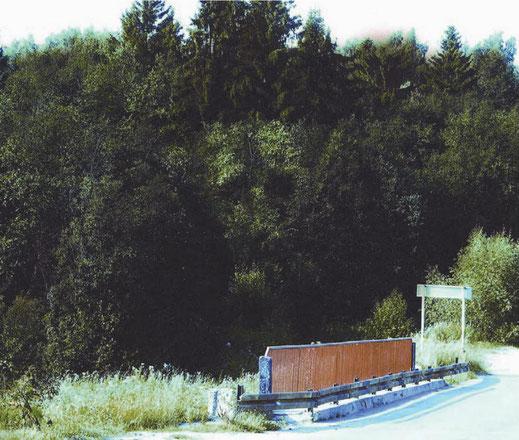 Лесной дух  - изображение параллельного мира (2004)