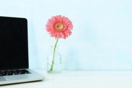白いマグカップとラベンダーの花。