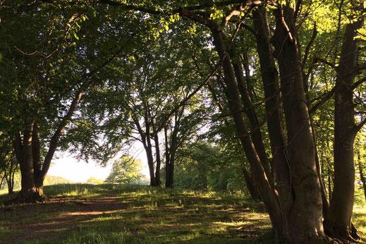 Fresko in der St. Bartholomäus, Maising