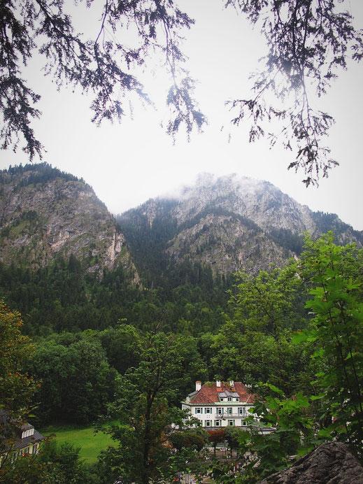 allemagne bavière chateaux montagne forêt