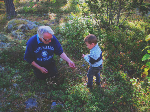 bigousteppes suède rencontre forêt