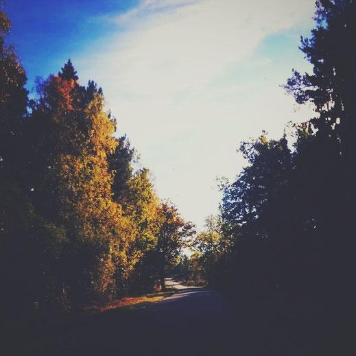 suède route