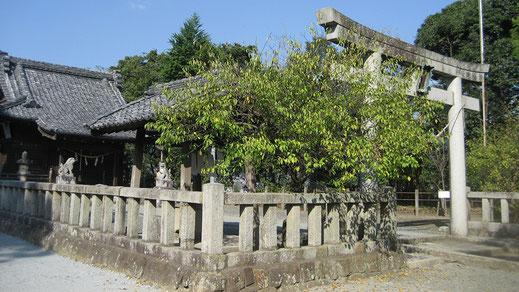 三島神社本殿入口の画像