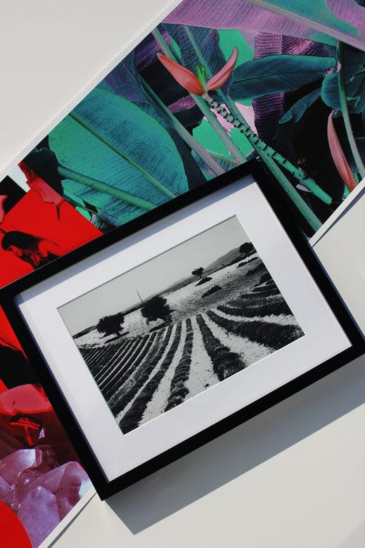 kunst künstler design art artwork sinsheim bild&grafik kusntdruck wandbild kaufen webdesign printart farbe leinwanddruck studio atelier
