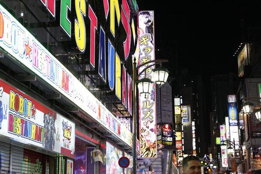 Tokio Japan, Sehenswürdigkeiten, blog, lonelyroadlover