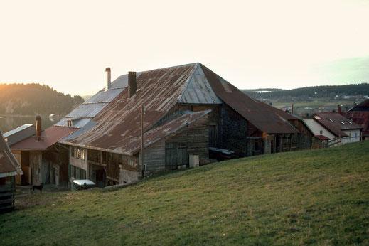 Das grosse Dach. Dieses Gebäude vereinigt unter 1 Dach 2 Höfe, verdoppelt und aneinander liegend. Die aktuelle Grösse erklärt sich durch Veränderungen die im XIX. Jh. vorgenommen wurden. Man denkt, dass der Bau auf das Ende des XVI. Jh. zurück reicht