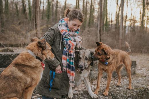 Hundefotografie Berlin Brandenburg Frau drei Hunde natürliche Portraits mit Haustier