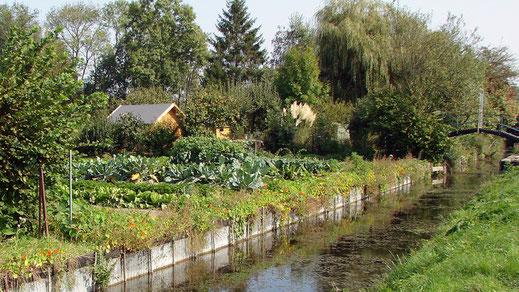 Les hortillonnages d'Amiens