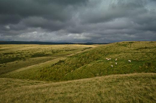 Berge, Wales, Brecon Beacons, zerina Kaps