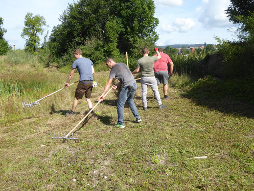 Bei der Pflege von Feuchtgebieten ist viel Handarbeit nötig.