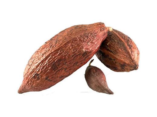 chocolats maison padiou patisserie barcelonnette_42