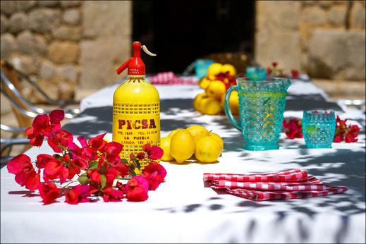 Finca Fotograf Palma De Mallorca