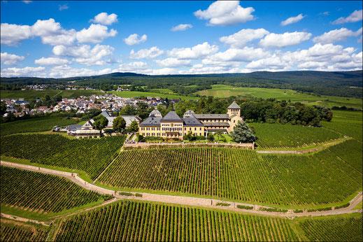 Drohnenfotograf Rheingau