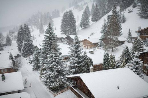 Ferienhaus im Schnee im winterlichen märchenhaften Wald bei Kandersteg in der Schweiz