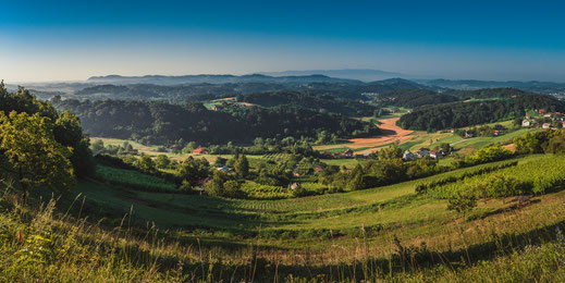 Panoramablick auf eine romantisches Dorf bei Maribor in Slowenien