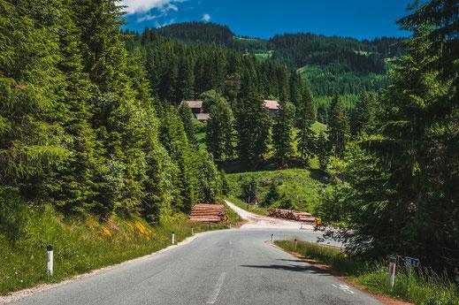 Landstraße durch die Berglandschaft und Wälder von Österreich