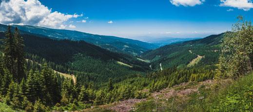 Österreichische Berglandschaft und wilde Natur von Steiermark