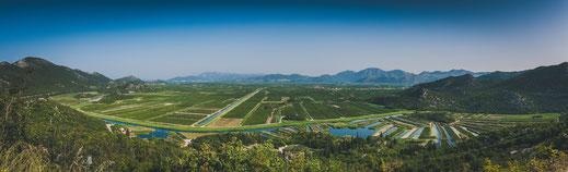 Unendliche Zitrus Plantagen in Kroatien bei Delta Neretve Landwirtschaft Landschaft Landschaftsaufnahmen Landschaftsfotografie Zitrusplantage Zitronenbäume Orangenbäume Podgradina Rogotin Berge Berglandschaft Buk-Vlaka