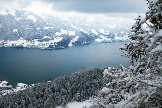 Schweizer Berge und Wälder am Brienzersee