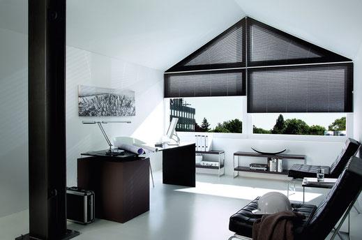 Sichtschutz und Sonnenschutz für Fenster - Hier Kadeco Plissee in schwarz für Giebelfenster