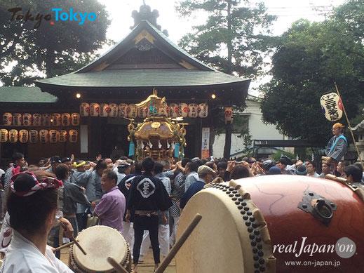 太子堂八幡神社例大祭,連合宮入渡御,キャロットタワー,三軒茶屋