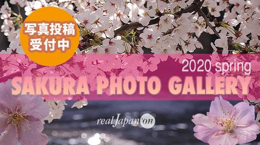 桜フォトギャラリー2020, 桜フォトコンテスト2020