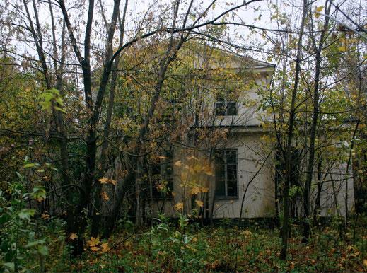 Конный двор усадьбы Петровское - Мечниково