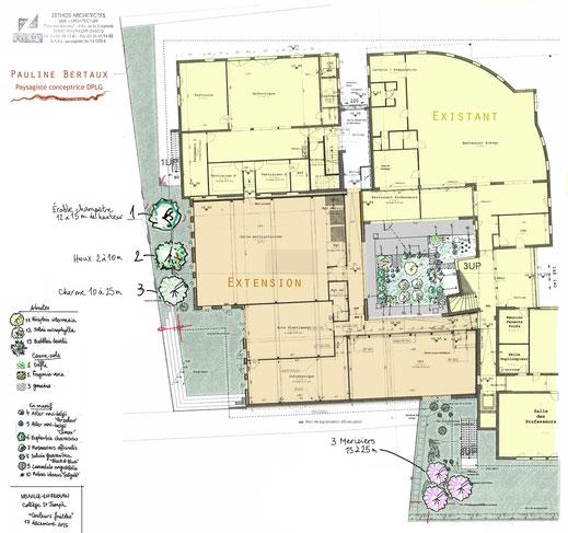 Plan masse du collège, extension & espace extérieur