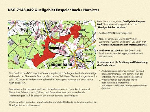 """Naturschutzgebiet """"Quellgebiet Enspeler Bach / Hornister"""""""