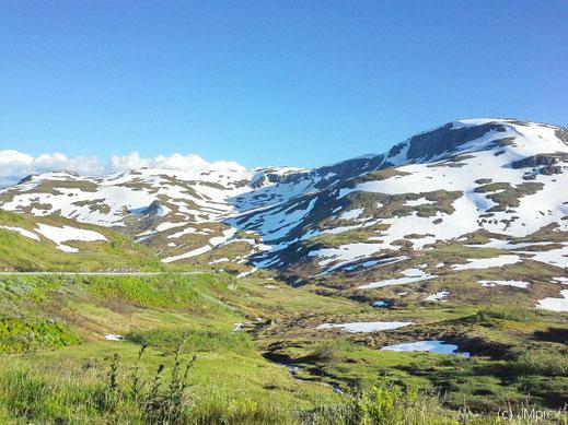 Fjell am Sommeranfang: Gras neben Schneeresten auf dem Rv13 (Myrkdalsvegen)