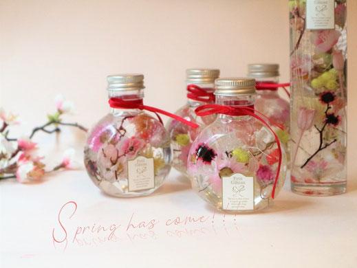 ハーバリウムの桜モチーフの春バージョン