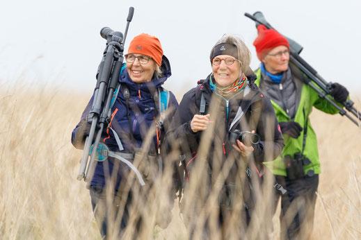 Reisegruppe von shorebirder.ch unterwegs im Beltringharderkoog
