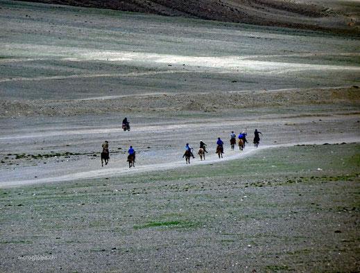 Sie trainieren für das kommende Naadam Fest