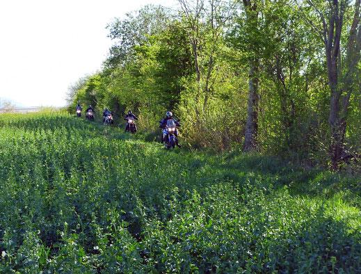 Motorradreisen Motorräder fahren durch einen Feldweg