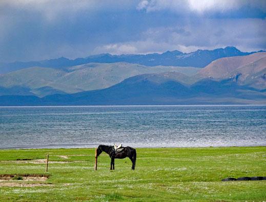 Die Kirgisen sind ein Reitervolk