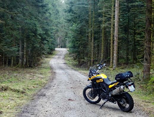 Motorradreisen: Die BMW f800 GS steht auf einer Schotterstrasse mitten im Wald im Jurargebiet.