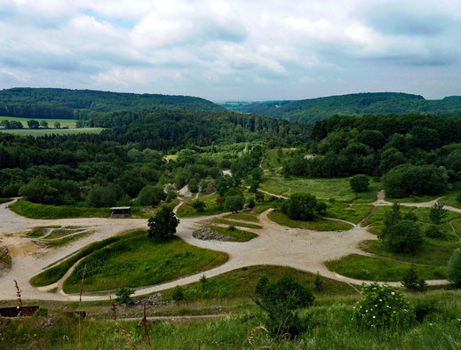 Motorradreisen Aussicht auf Schotterstrassen, Wald und Himmel