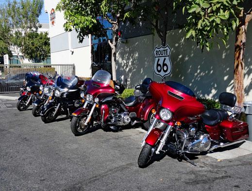Motoglobe Motorradreisen. Es stehen sechs Harley Davidsons auf dem Parkplatz vor dem Hauptgebäude der Firma Eagle Rider, Los Angeles, USA.