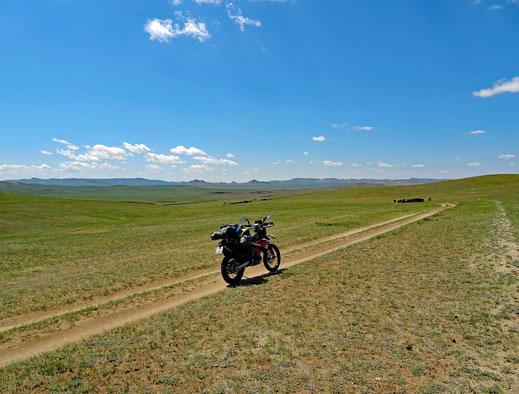 Motorrad, Track, Rinder, grüne Wiesen, blauer Himmel mit weissen Wolken
