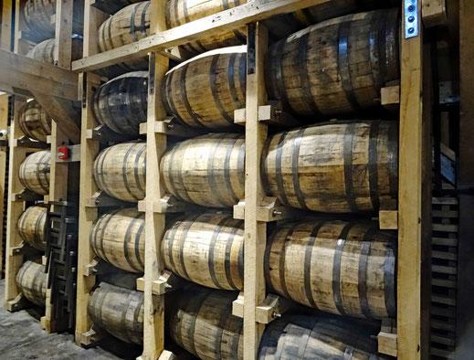 Motoglobe_Motorradreisen. Im Whiskylager auf dem Fabrikareal lagern unzählige gefüllte Fässer voll mit Whisky.