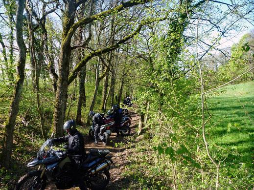 Motorradreisen, Motorräder drehen im Wald auf einem schmalen Weg