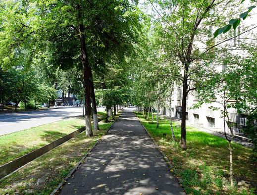 Überall sind die Strassen und Gehsteige mit Grünflache umgeben