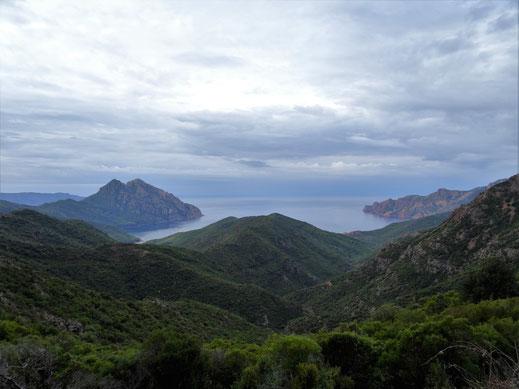 Blick vom Aussichtspunkt auf den Golf Girolata