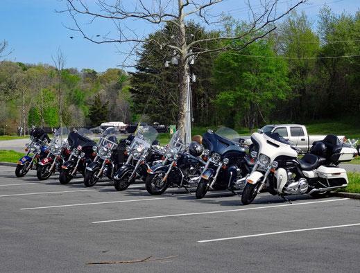 Motoglobe_Motorradreisen. Die Harley Davidson Motorräder stehen alle auf einem grossen Parkplatz umgeben von Bäumen und Autos.