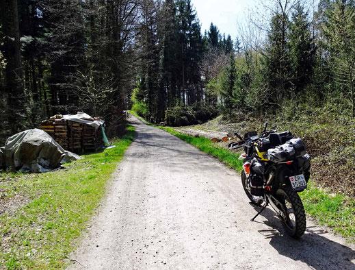 Motorrad steht auf Schotterstrasse im Wald mit Gepäck