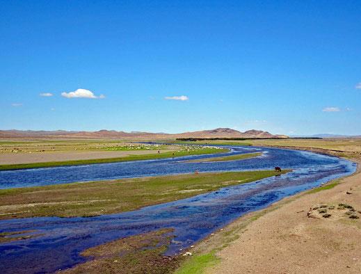 Blaues Wasser vom Fluss Tuul, Rinder und Pferde, Sand, Berge, blauer Himmel