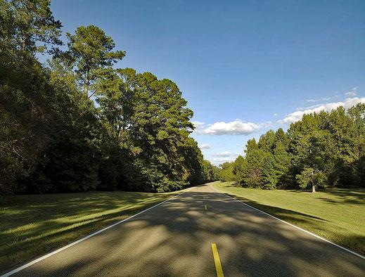 Motoglobe_Motorradtouren. Die Strasse Natchez Trace Parkway führt durch den Wald und Wiesengebiet