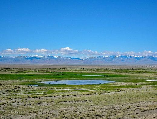 Farbkontraste wie in der Mongolei