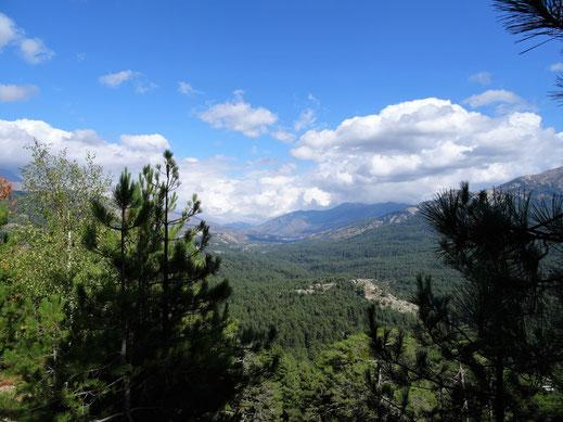 Schöne Ausblicke von der Passstrasse des Col de Vergio
